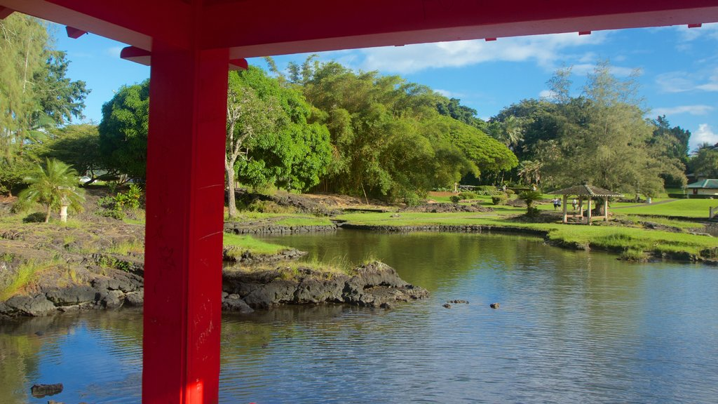 Liliuokalani Park and Gardens which includes a pond and a park