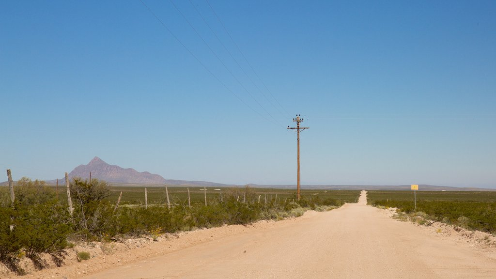 Guadalupe Mountains National Park featuring desert views