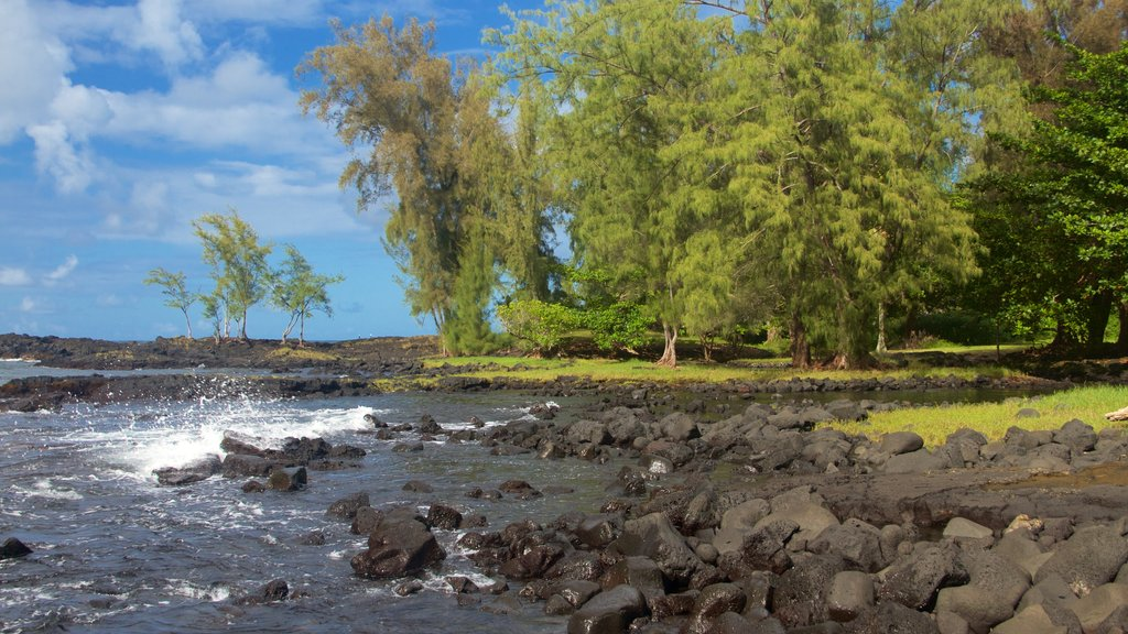 Keaukaha Beach Park featuring rugged coastline