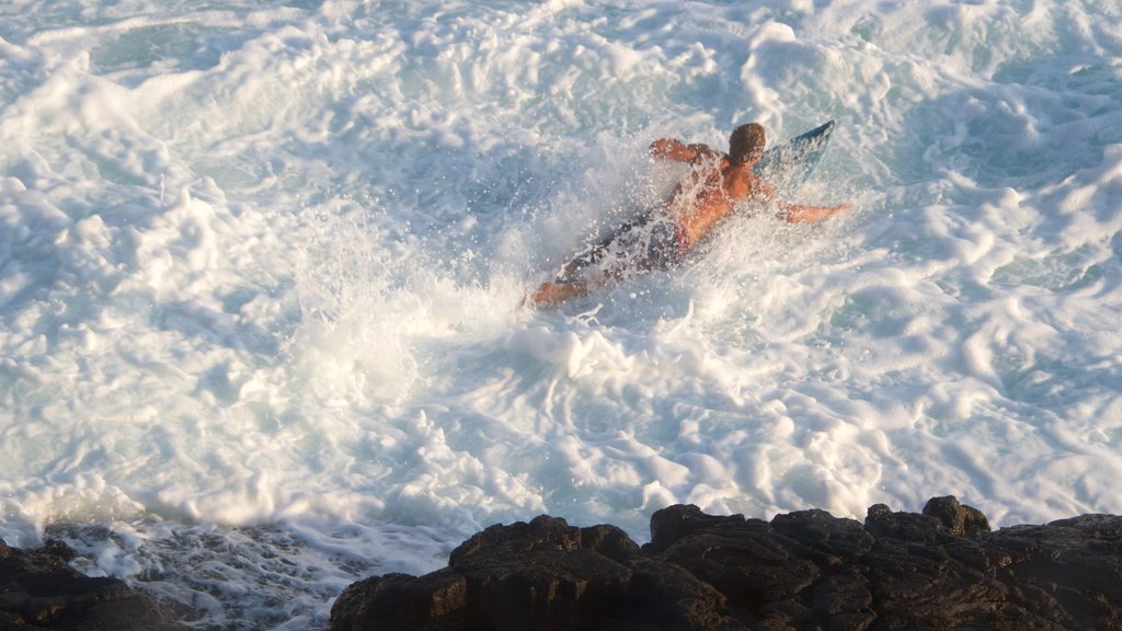 Kailua-Kona showing rocky coastline and surfing as well as an individual male