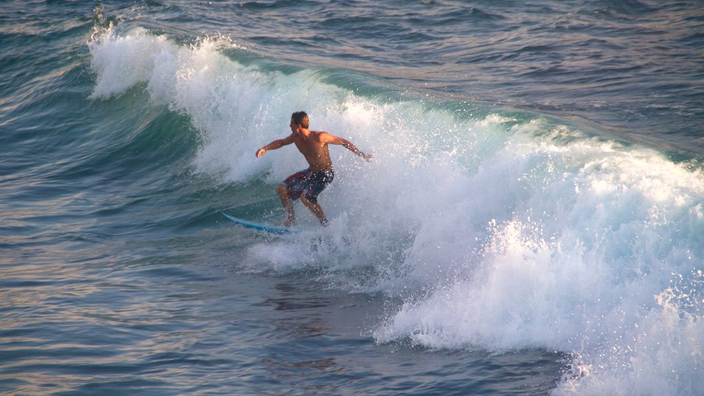 Kailua-Kona featuring surfing as well as an individual male