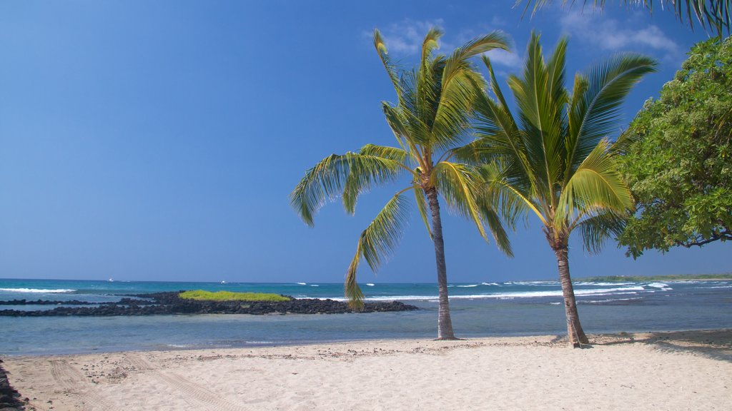Kailua-Kona which includes a sandy beach