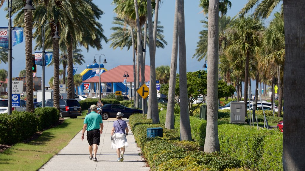 Clearwater Beach which includes hiking or walking as well as a couple