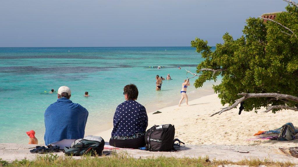 Dry Tortugas National Park que inclui uma praia de areia e paisagens litorâneas assim como um casal
