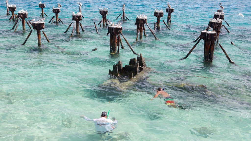 Dry Tortugas National Park que inclui snorkel e paisagens litorâneas assim como um pequeno grupo de pessoas