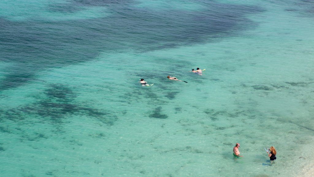 Dry Tortugas National Park caracterizando snorkel e paisagens litorâneas assim como um pequeno grupo de pessoas