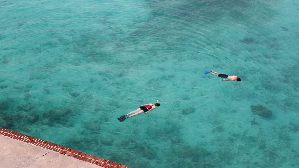 Dry Tortugas National Park featuring general coastal views and snorkeling as well as a small group of people