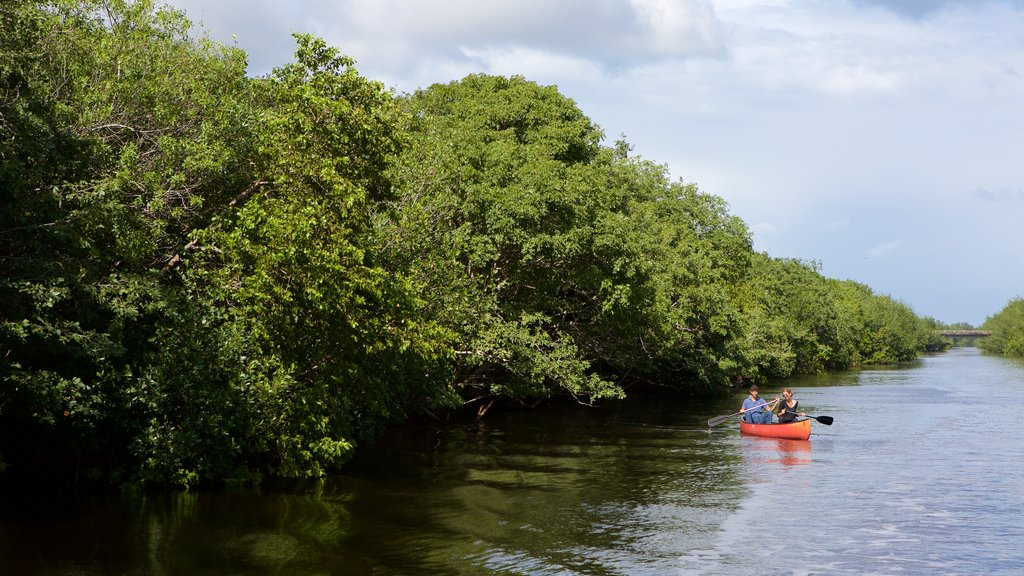Everglades National Park which includes kayaking or canoeing and a river or creek as well as a couple
