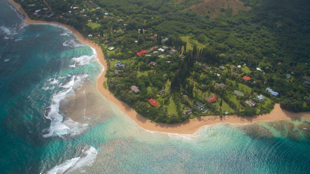 Kauai Island which includes general coastal views, a coastal town and a beach