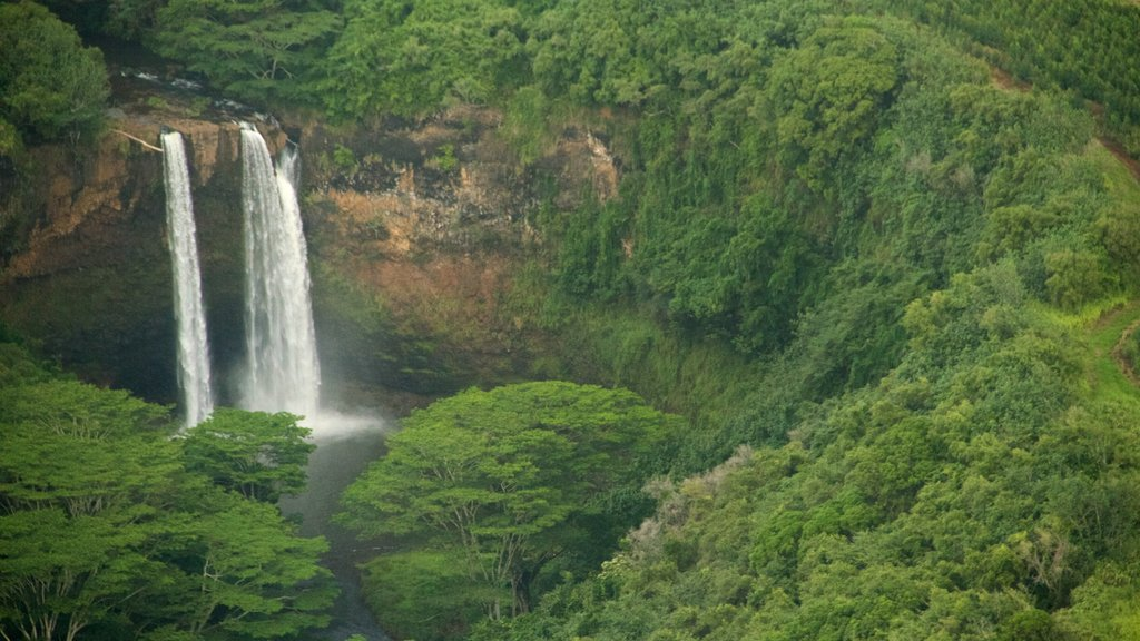 Kapaa showing a waterfall, mountains and forests