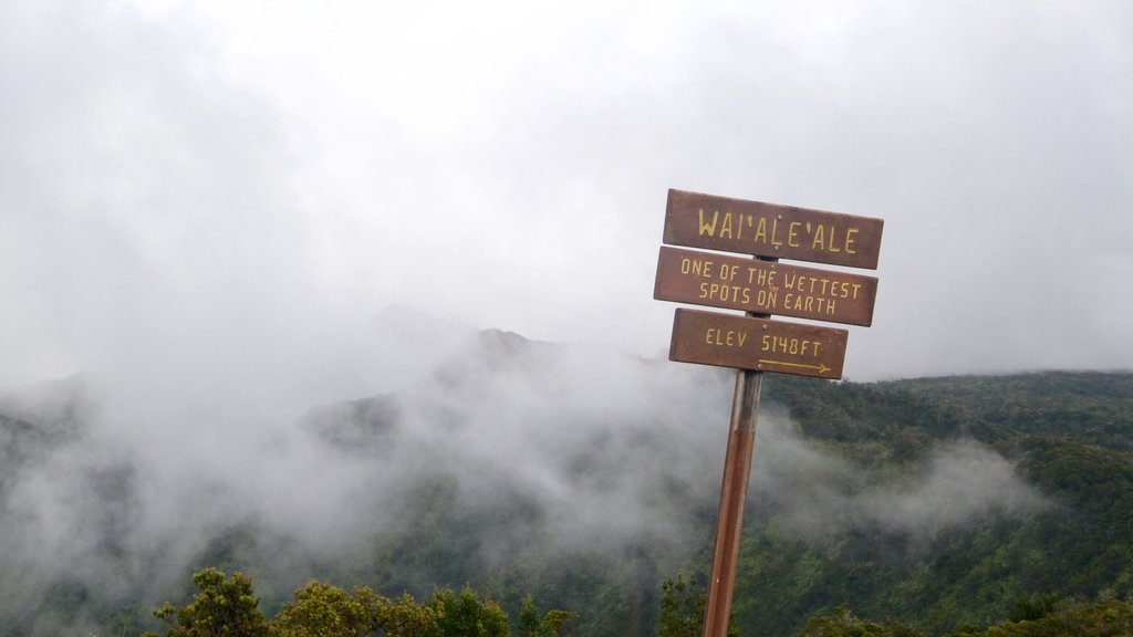 Waimea featuring mist or fog, a gorge or canyon and signage