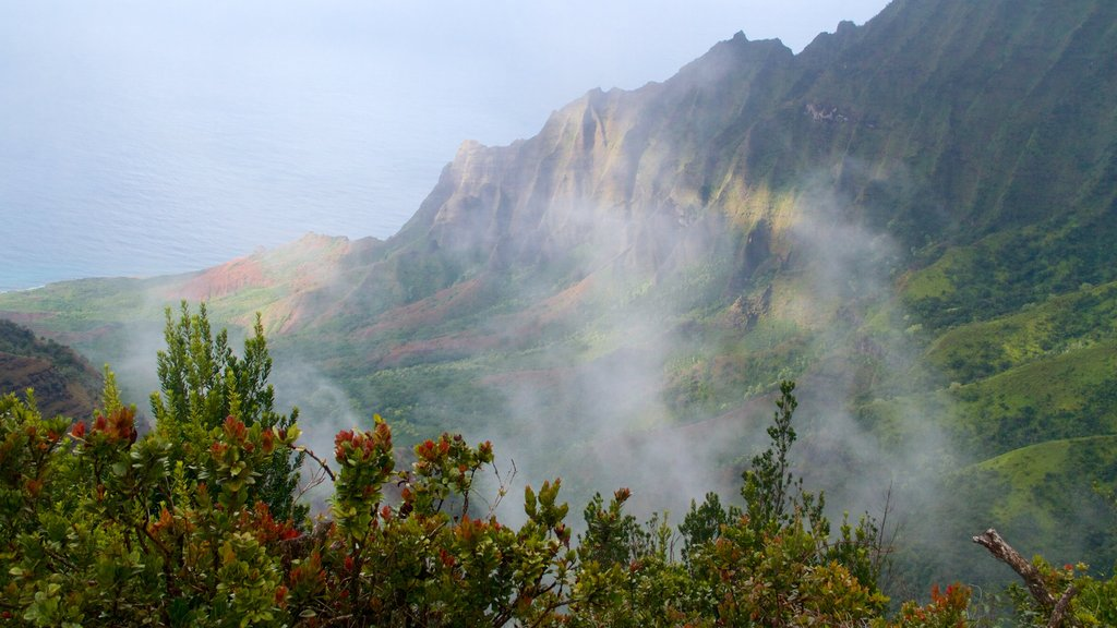 Waimea which includes a gorge or canyon, landscape views and mist or fog