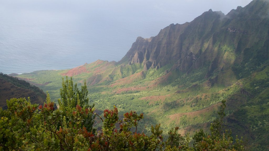 Pu\'u O Kila Lookout featuring landscape views and a gorge or canyon