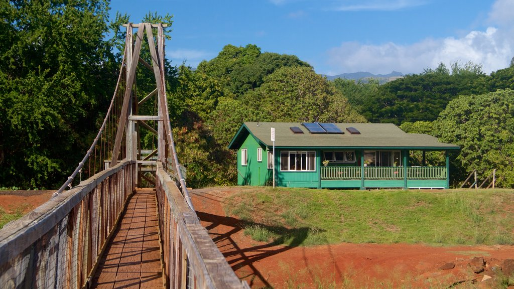 Hanapepe showing a house and a suspension bridge or treetop walkway