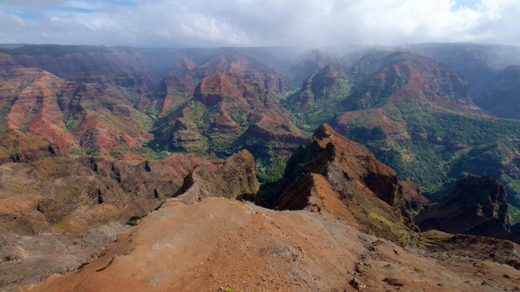 Waimea Canyon which includes a gorge or canyon