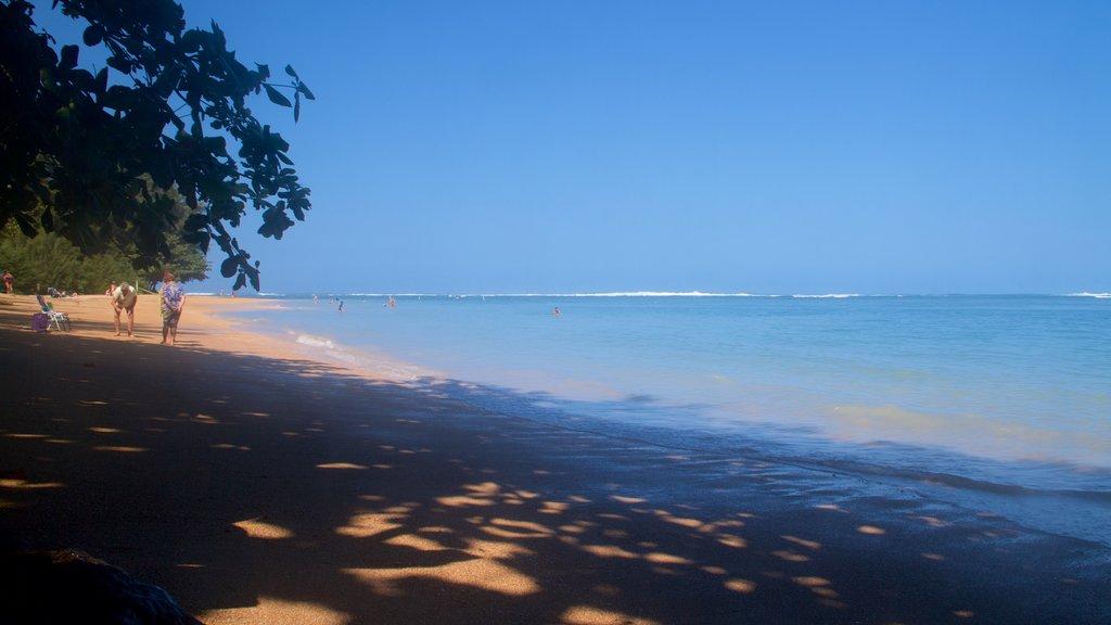 Anini Beach which includes a sandy beach