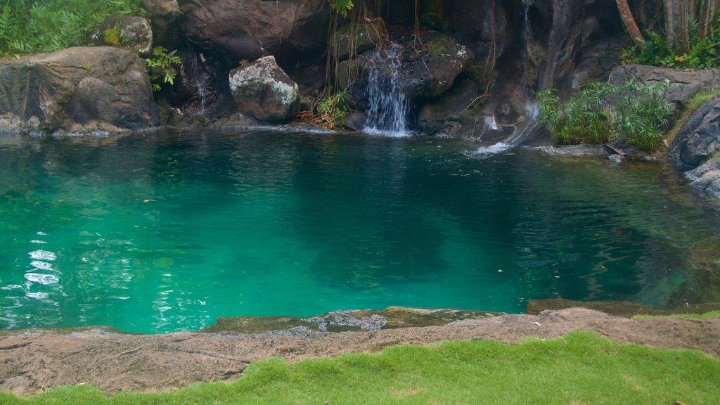 Na Aina Kai Botanical Gardens featuring a lake or waterhole