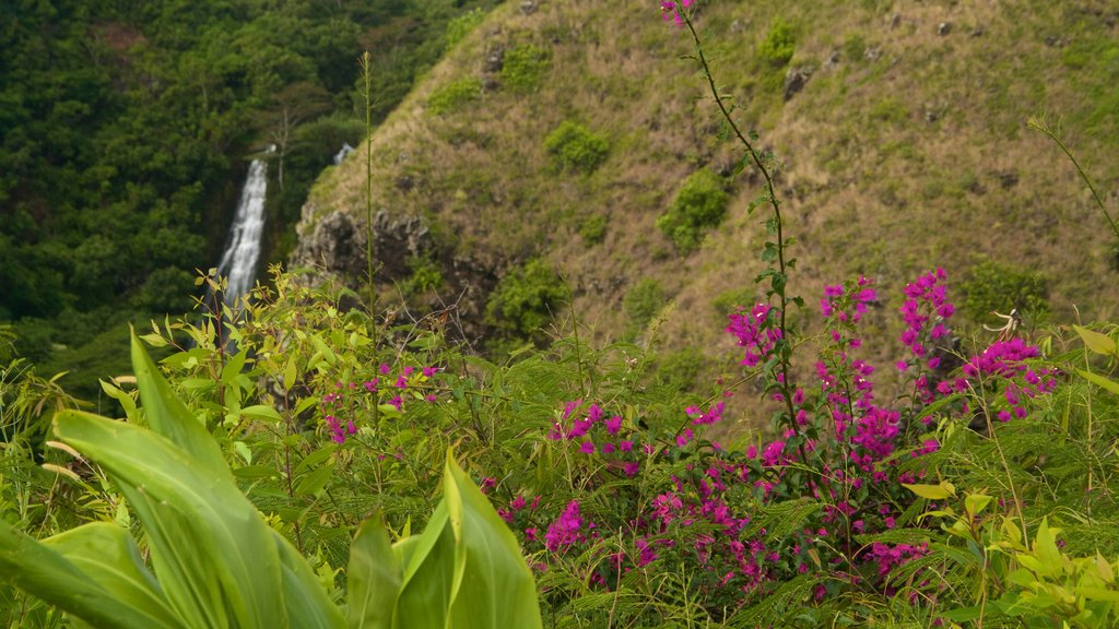 Opaekaa Falls which includes wildflowers