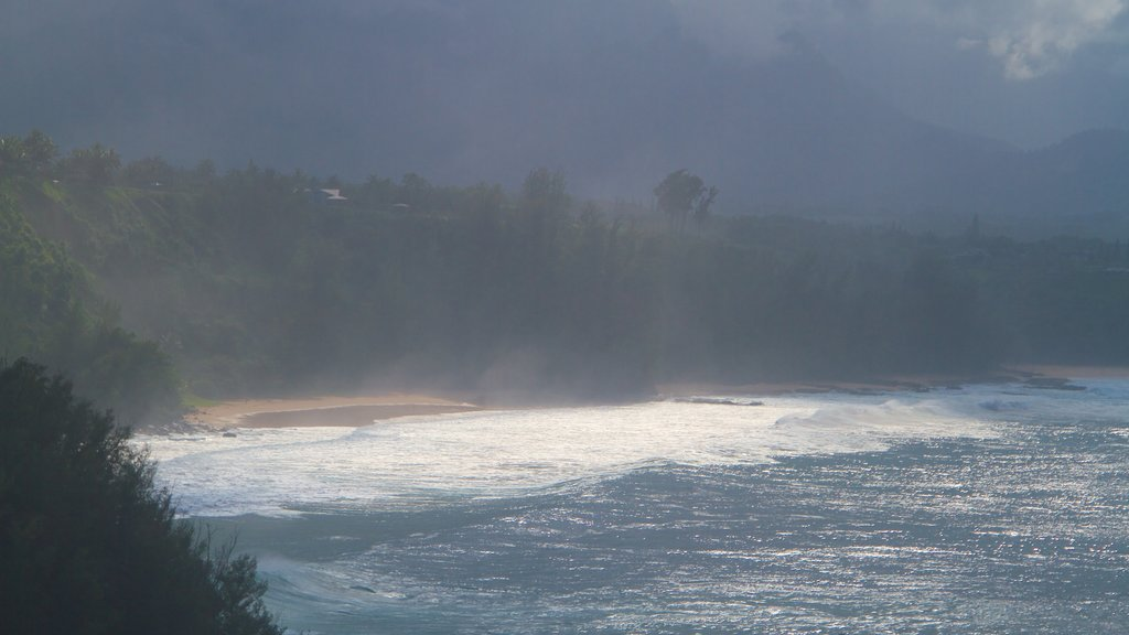 Kilauea Lighthouse showing general coastal views and mist or fog