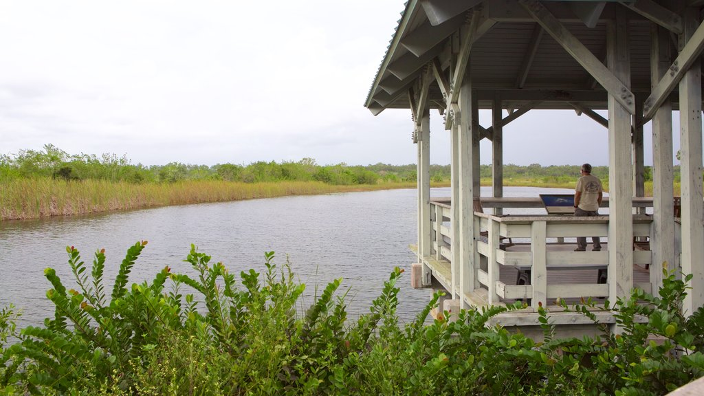 Ernest F. Coe Visitor Center showing views and wetlands as well as an individual male