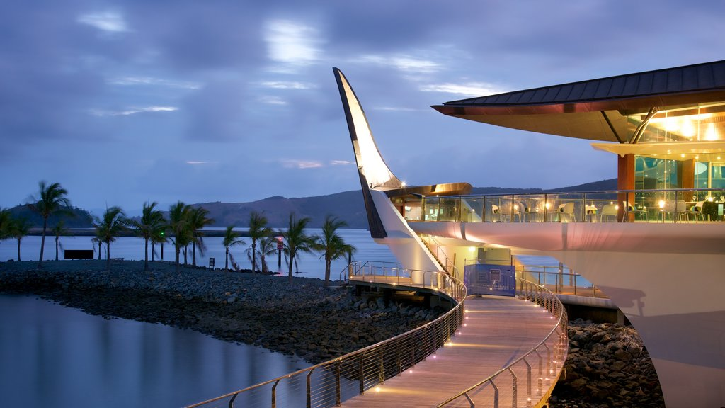 Hamilton Island showing general coastal views and night scenes