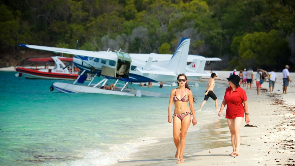 Hamilton Island showing aircraft and a sandy beach as well as a small group of people