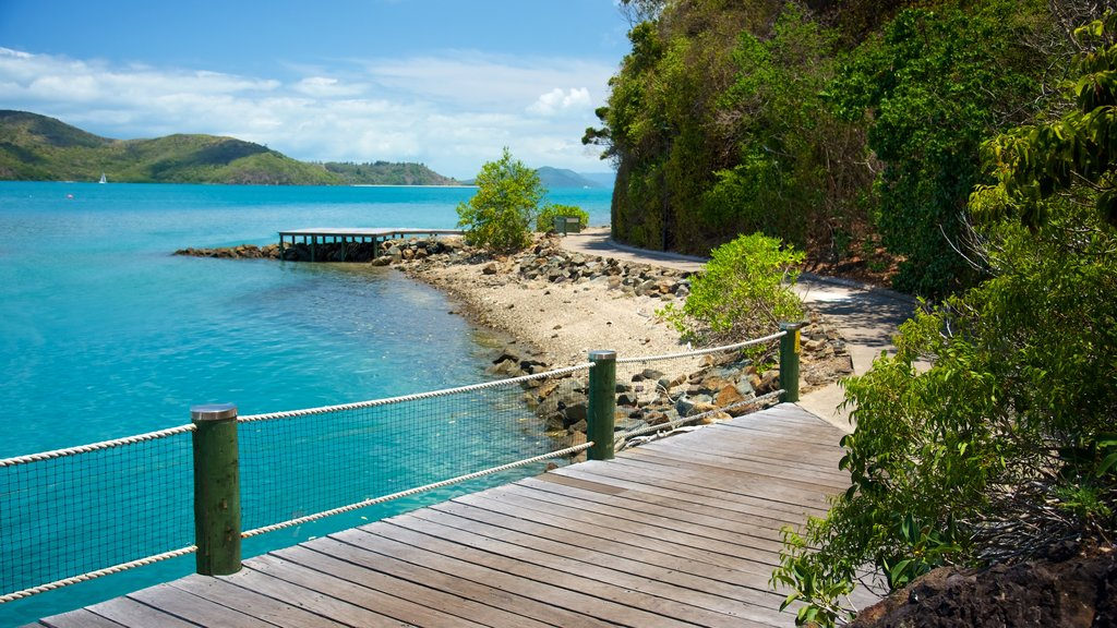 Daydream Island which includes a park, general coastal views and tropical scenes