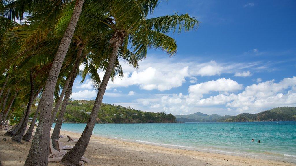 Playa Catseye ofreciendo una playa de arena y vistas de paisajes