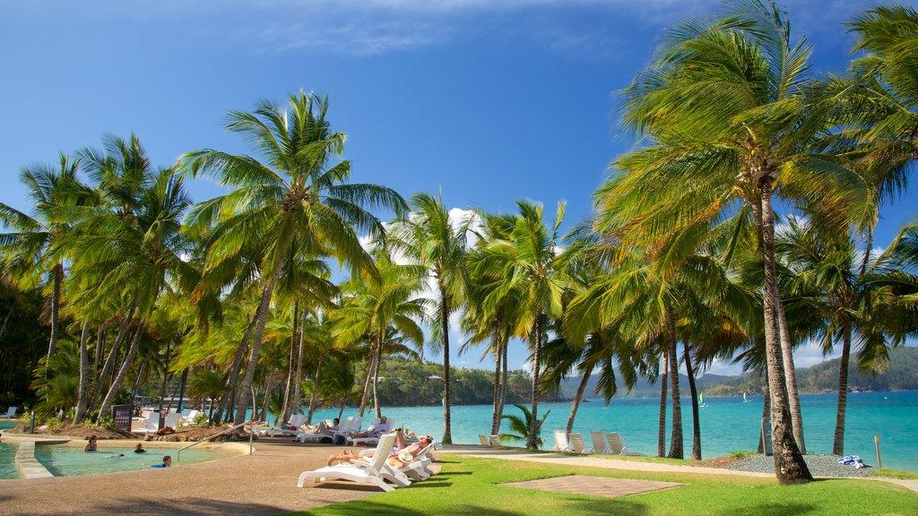 Playa Catseye mostrando un hotel o resort de lujo, vistas generales de la costa y una alberca