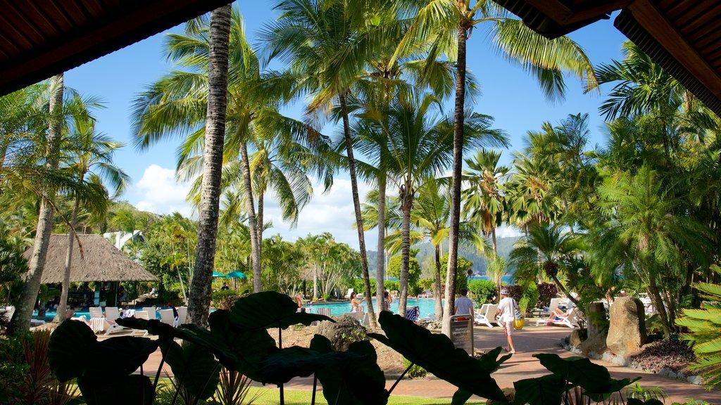 Playa Catseye que incluye vistas generales de la costa y un hotel o resort de lujo