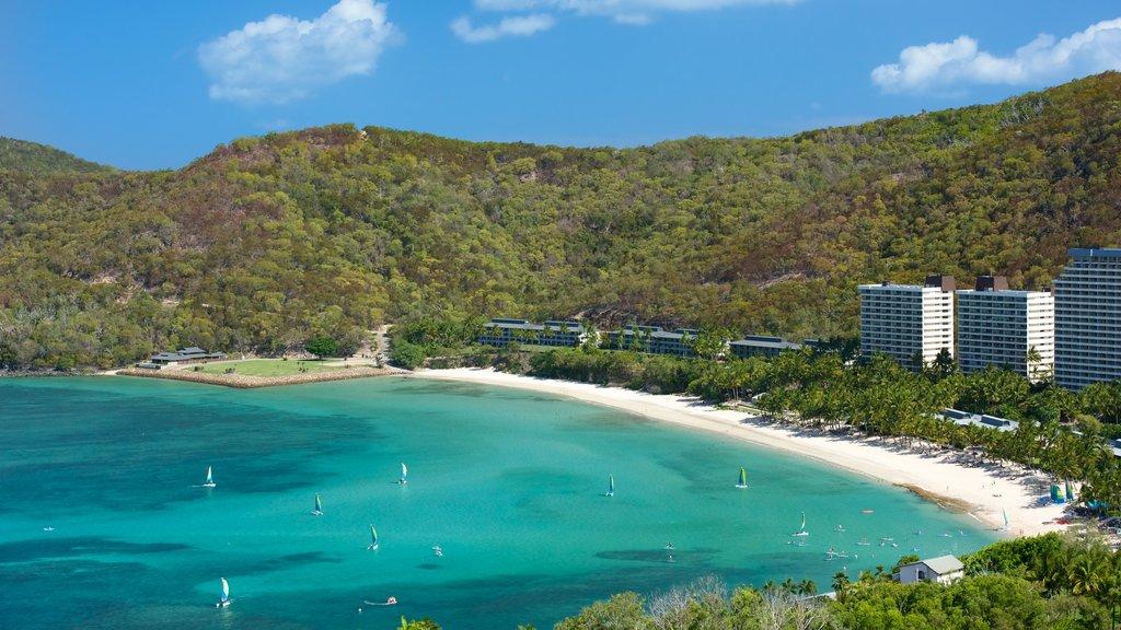 Playa Catseye que incluye vistas generales de la costa y una ciudad costera