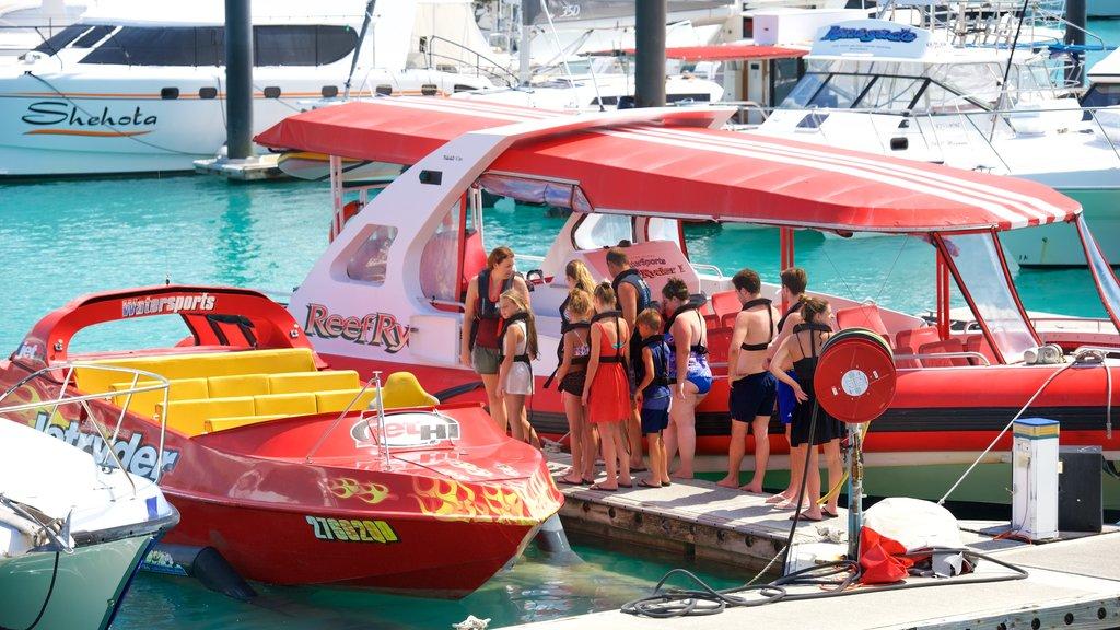Hamilton Island Marina ofreciendo una bahía o puerto y paseos en lancha y también niños