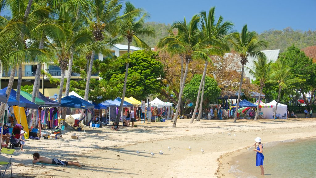 Airlie Beach featuring markets and a beach