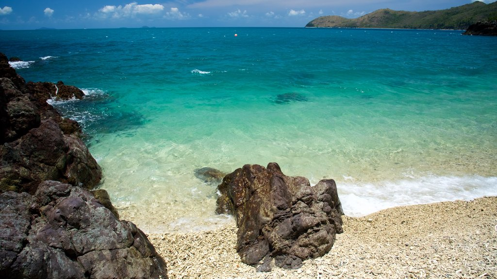 Lovers Cove featuring tropical scenes, general coastal views and a sandy beach