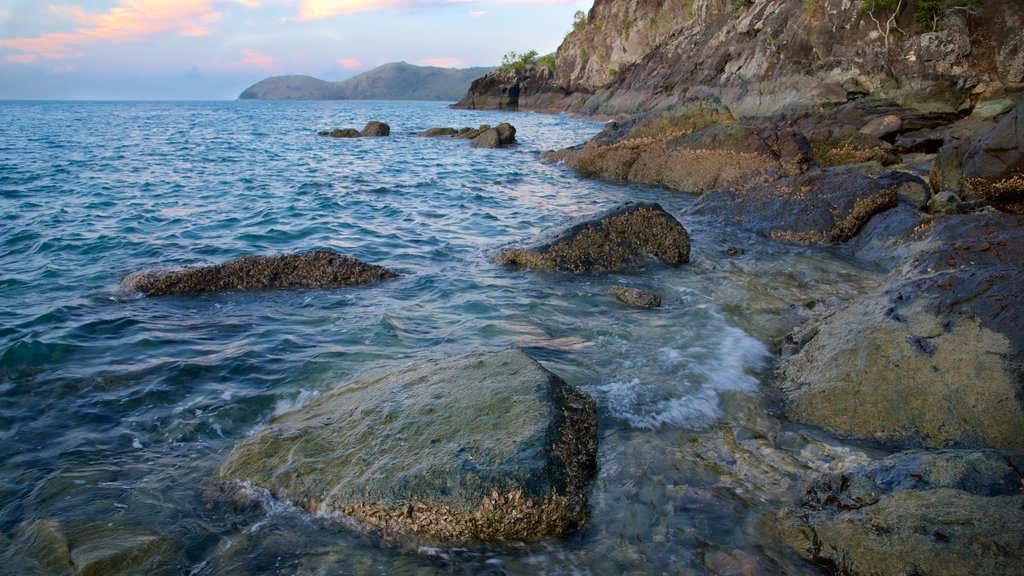 Lovers Cove featuring rugged coastline and general coastal views