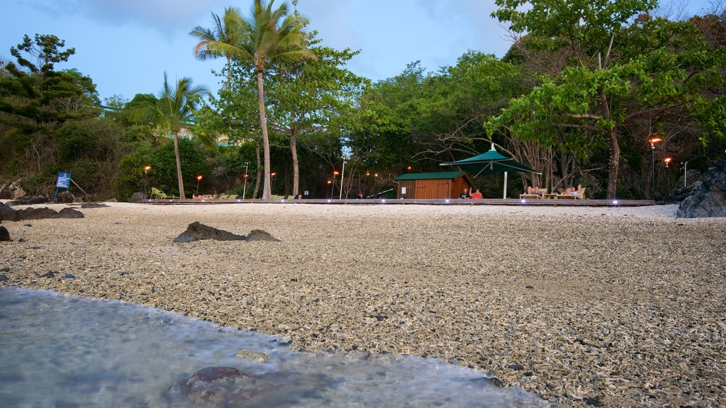 Daydream Island showing a pebble beach