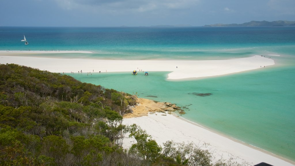 Whitsunday Island which includes general coastal views and a sandy beach
