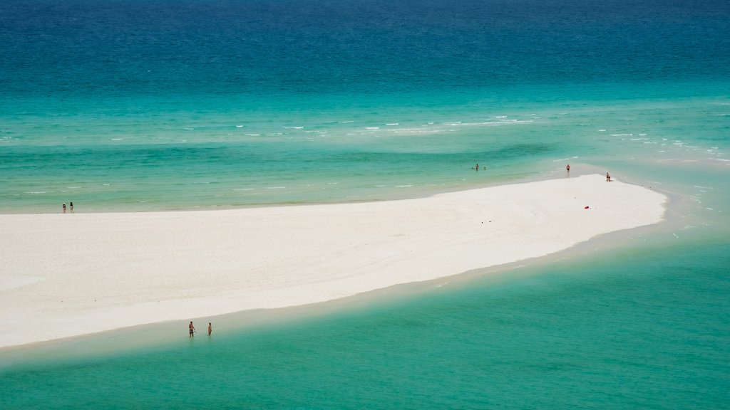 Whitsunday Island which includes general coastal views, a sandy beach and tropical scenes