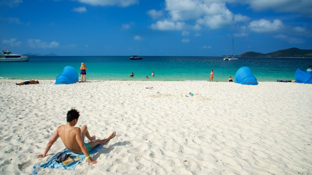 Hamilton Island which includes a sandy beach and landscape views as well as an individual male