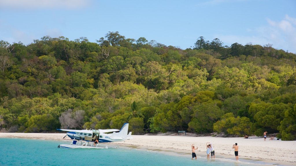 Hamilton Island featuring tropical scenes, a beach and aircraft