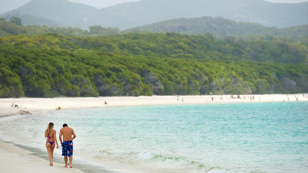 Hamilton Island which includes a sandy beach and tropical scenes as well as a couple