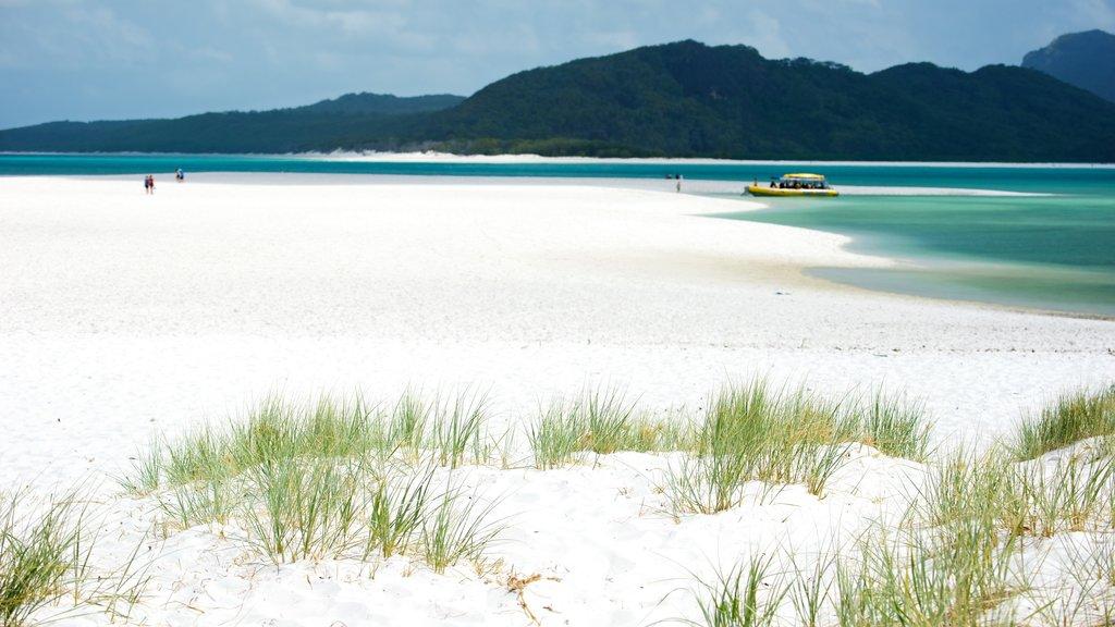 Hamilton Island which includes a beach, general coastal views and landscape views