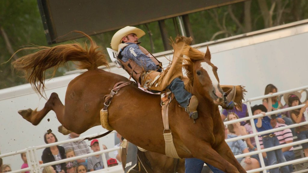 North Platte which includes a sporting event and horseriding as well as an individual male