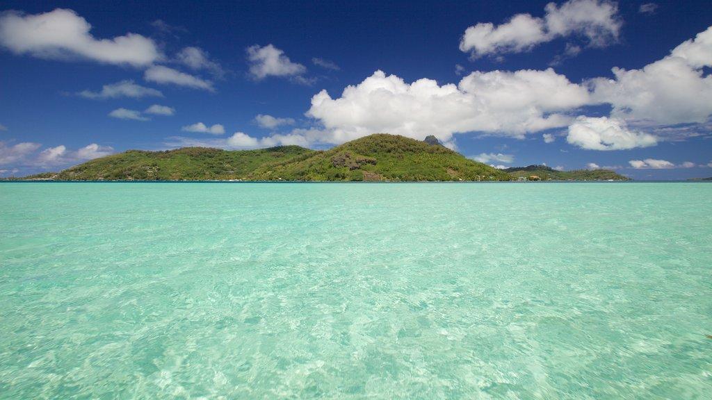 Bora Bora ofreciendo escenas tropicales, vistas generales de la costa y vistas de paisajes
