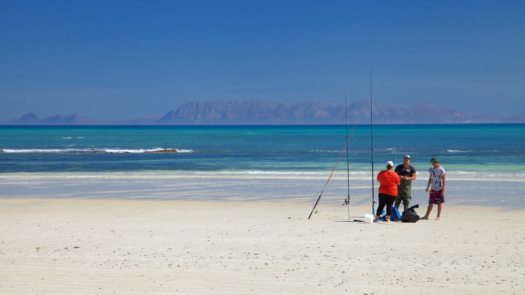 Strand showing fishing and a sandy beach as well as a small group of people
