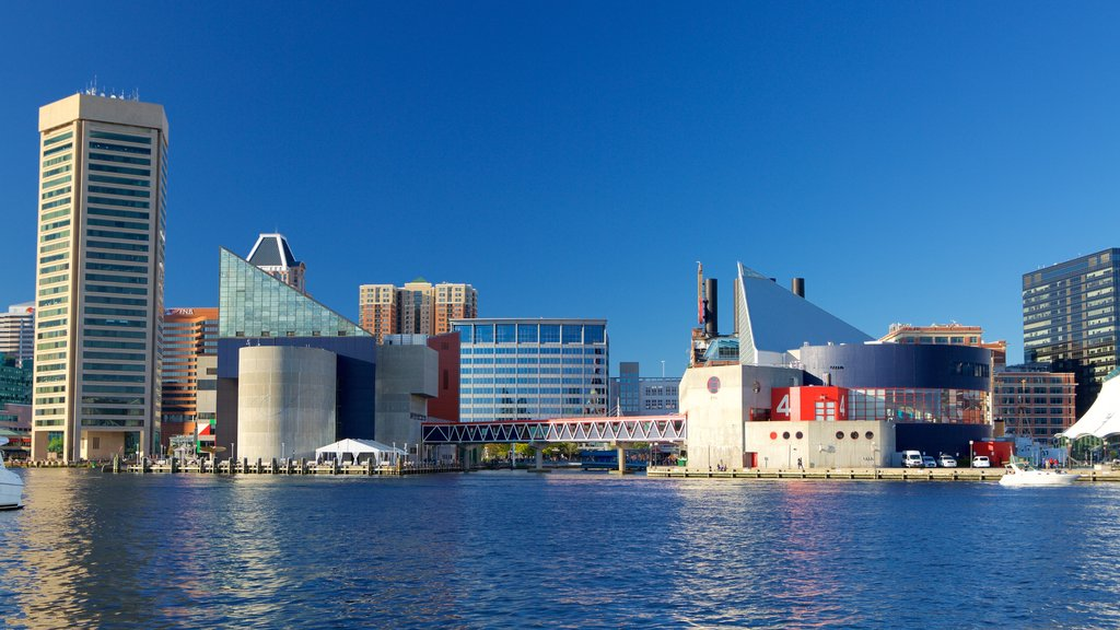 Baltimore which includes a city, skyline and a marina