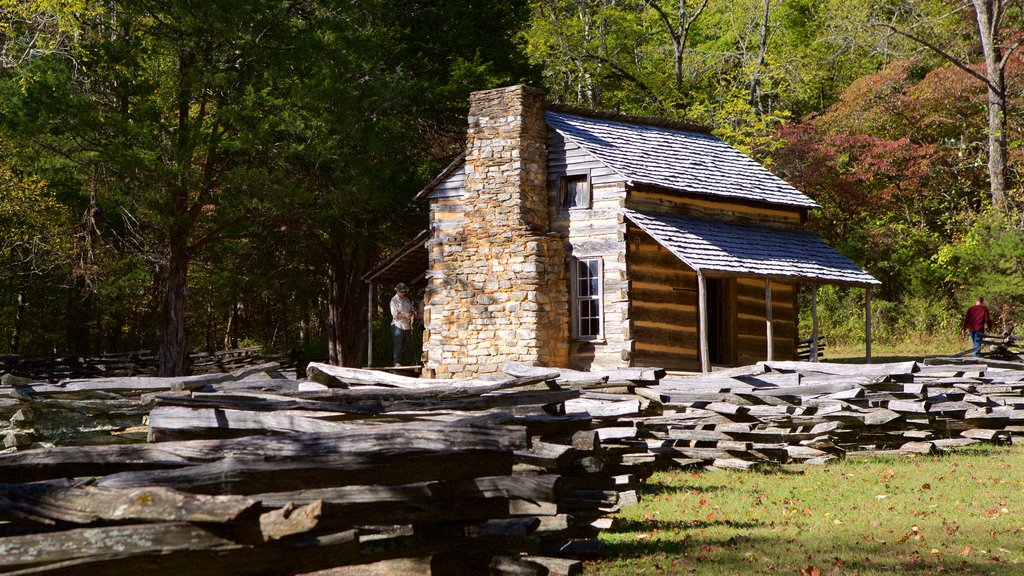 Cades Cove featuring tranquil scenes, forest scenes and a house
