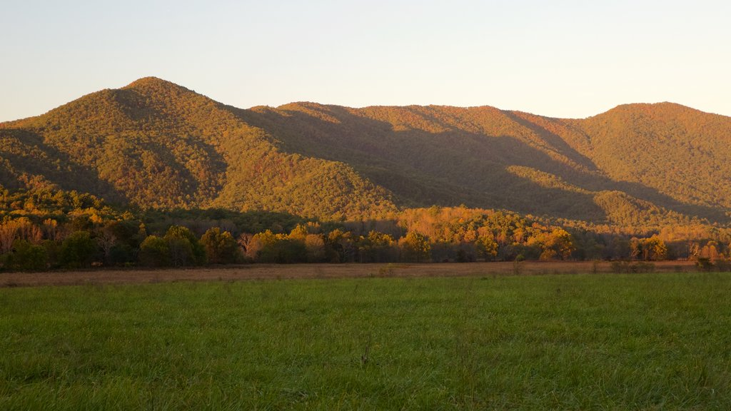 Cades Cove which includes tranquil scenes, mountains and landscape views