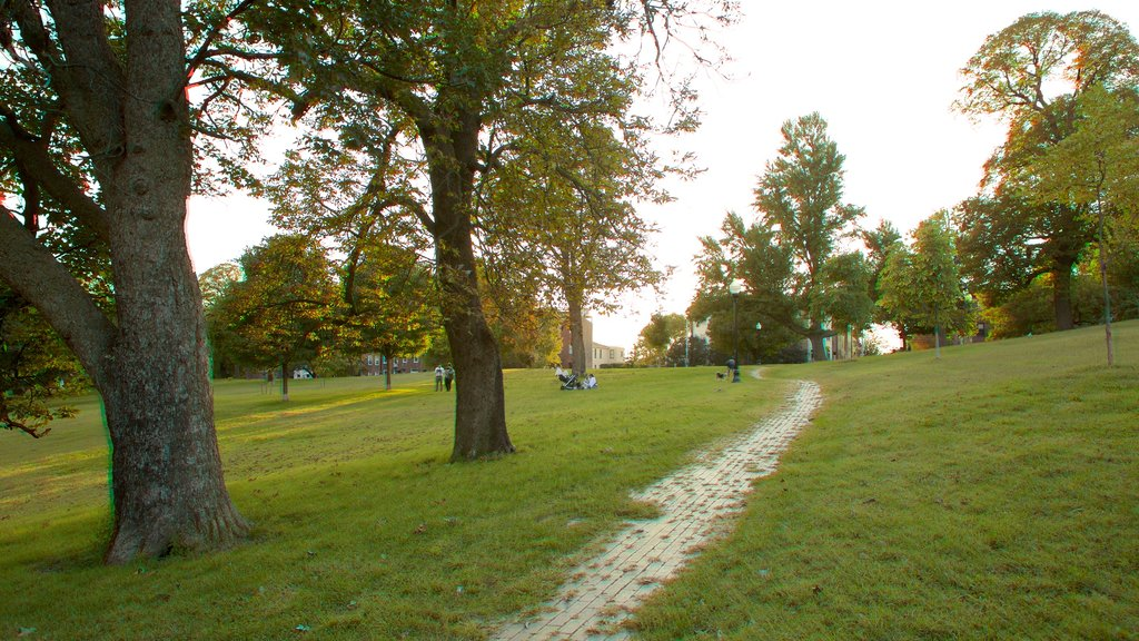 Patterson Park featuring a garden