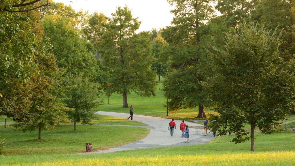 Patterson Park ofreciendo un parque y también un pequeño grupo de personas